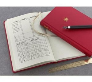 Letts dotted notebook diary, plan, to do, organise,